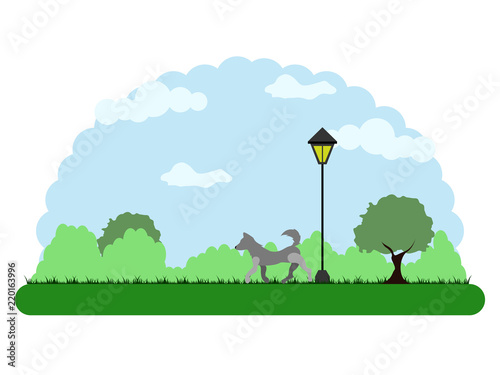 Landscape of a park with a dog walking