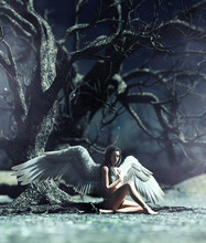 An Angel In Mystical Forest,3d Illustration For Book Illustration Or Book Cover