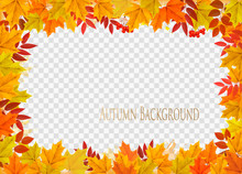 Abstract Autumn Frame With Col...