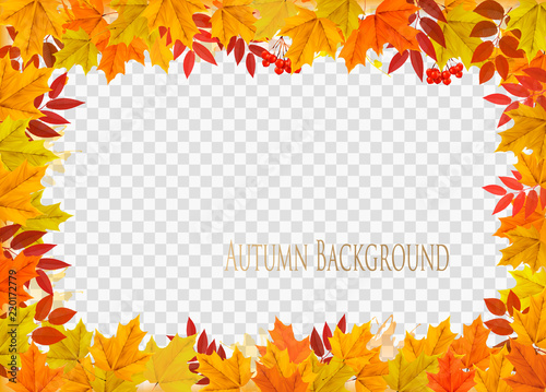 Foto  Abstract autumn frame with colorful leaves on transparent background