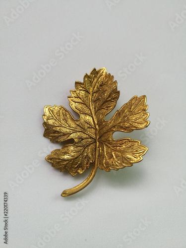 Fotomural Gold leaf brooch