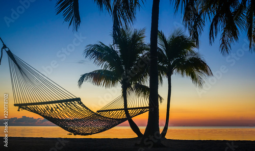 Cadres-photo bureau Palmier Hammock hangs between palm trees at sunrise.