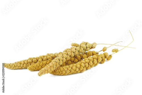 Fotomural Bird food: dried green foxtail plant isolated on white background