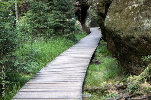 Photo  Wooden path in Adrspach National Park, Czech Republic