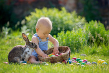 Cute Child, Playing With Little Bunny And Easter Eggs In A Blooming Garden, Springtime