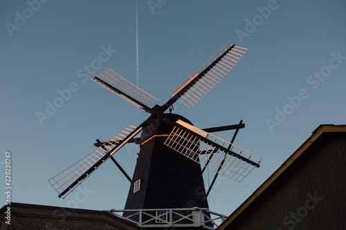 Fotografie, Obraz  Old mill - summer in Denmark