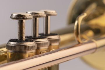 Szczegółowo trąbka na instrument muzyczny.