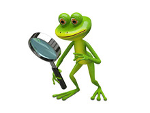 3D Illustration Green Frog With Magnifier
