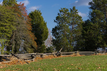 Split Log Fence In Fall