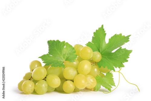 Fototapeta raisin vert, isolé sur fond blanc obraz