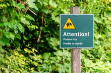 Warning Sign For Poison Ivy In...