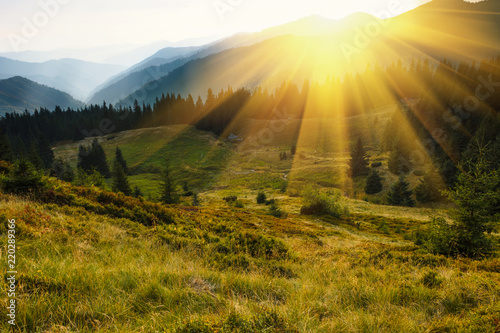 Foto auf Gartenposter Hugel Majestic landscape of mountains. A view of the misty tops of the mountains in the distance. Morning misty coniferous forest hills in fog and rays of sunlight. Travel background.