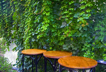 Three Round Wooden Tables With...