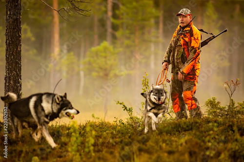 Hunter and hunting dogs chasing in the wilderness