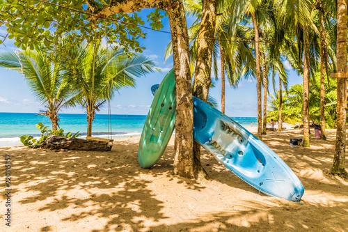 Fotografie, Obraz  A typical view in Punta uva in Costa Rica