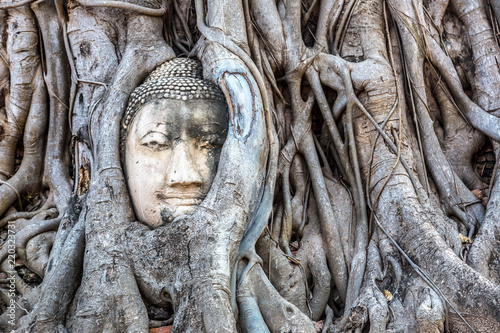 Ayutthaya Head of Buddha statue Canvas Print