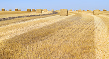 Bales Of Straw.