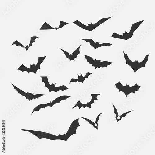 Photo Bat vector for Halloween Content