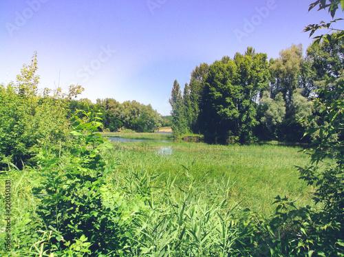 Foto op Canvas Pistache Near river