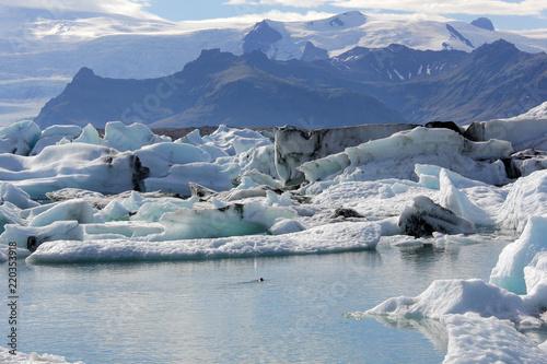 Foto op Plexiglas Arctica magnifique paysage