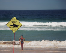 Shark Warning Sign On Manly Be...
