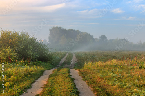 Spoed Foto op Canvas Bleke violet Field road along river bank in fog at sunny summer morning. River landscape