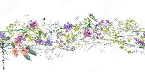 Photo  Watercolor summer wildflowers seamless border Botanical colorful illustration