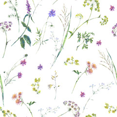 Fototapeta Łąka Watercolor summer wildflowers seamless pattern