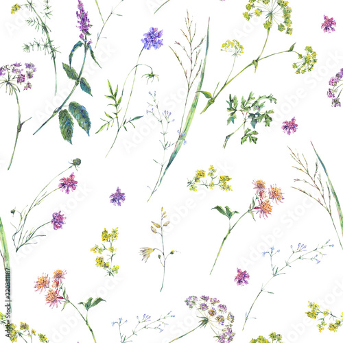 Watercolor summer wildflowers seamless pattern Wall mural