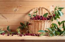 Ripe Juicy Cherries  In Basket...