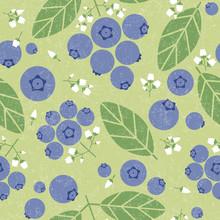 Blueberries Seamless Pattern. ...