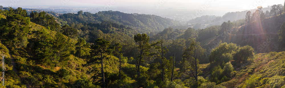 Fototapety, obrazy: Aerial Panorama of Oakland Hills in Northern California