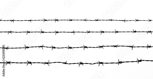 Fotomural silhouette of the barbed wire on white background