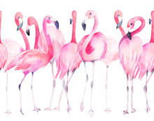 Watercolor Seamless Pattern With Exotic Flamingo. Summer Decoration Print For Wrapping, Wallpaper, Fabric