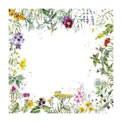 Naklejka Na szklane drzwi i okna Frame from herb. Watercolor hand drawn illustration. Botanical illustration