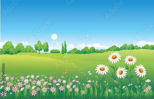 Poster Blauw Summer natural landscape