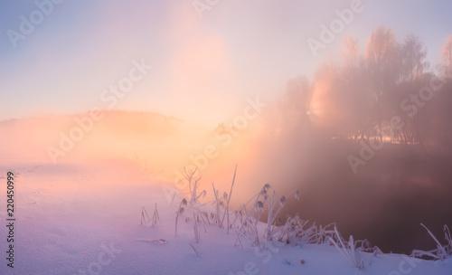 Keuken foto achterwand Lavendel Sunny winter morning