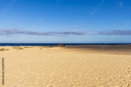 Tuinposter Canarische Eilanden Desert Sand Dunes with a view to the Ocean in Fuerteventura, Canary Islands, Spain