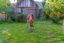 A Little Girl Scythe For Mowing And Collecting Grass With Extra Equipment.