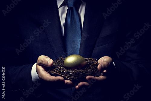 Fotografie, Obraz  金の卵を手に持ったビジネスマン