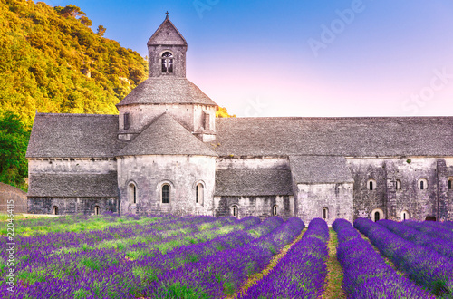 Fototapety, obrazy: France, Provence. Incredible landscape of Abbey Senanque, sunset scene. Blooming lavender valley at foreground. Medieval stone construction of abbey established on 1148 year. International landmark.
