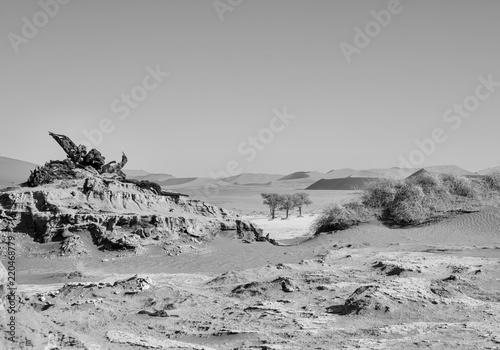 Dead Vlei Landscape