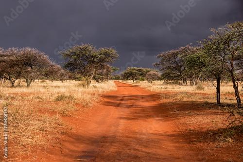 Deurstickers Oranje eclat Stormy Landscape