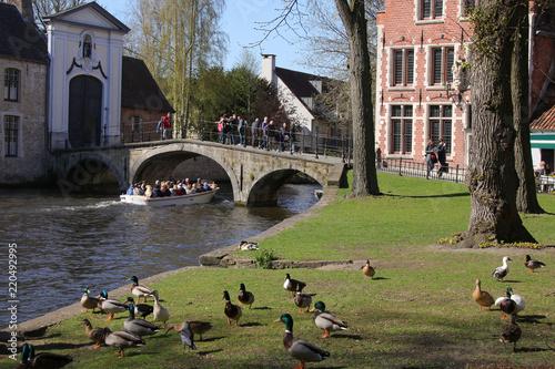 Minnewaterpark, Brügge, Brugge, Boat, Ducks