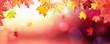 Leinwandbild Motiv Falling Autumn Maple Leaves Natural Colorful Background