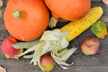 Top View On Pumpkins, Maize And Apples Arranged On A Wooden And Rustic Table