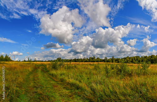 Spoed Foto op Canvas Bleke violet Landscape with clouds in the summer sky. The last days of August.