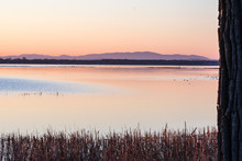 Sunset Over Lake Champlain Wit...