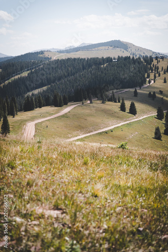 Spoed Foto op Canvas Wit Landscape view of ski runs in Vail, Colorado during summer.