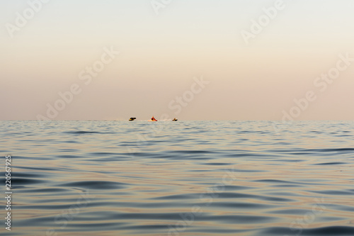 Foto  evening sea with waves, far away on a horizon line floating water bike, nature a